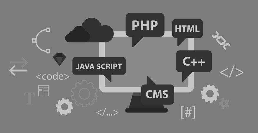 Conseil et stratégie Web, Design et conception & Développement